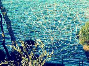 Sculpture by the Sea 'Web of Light'